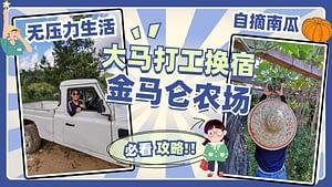 """Read more about the article 推荐马来西亚打工换宿超级好去处!以""""吃喝玩乐""""来体验金马仑和平农场Terra Farm 14天亲自种植有机蔬菜!"""